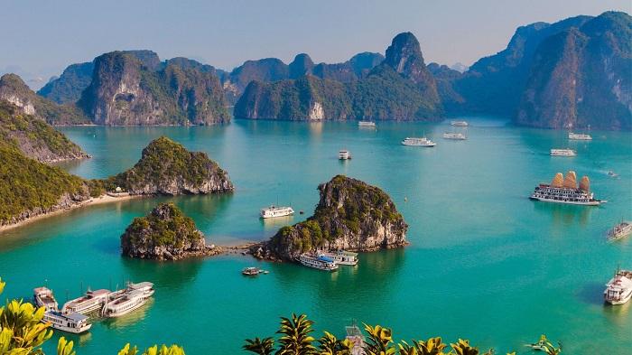 Thăm quan vịnh Hạ Long