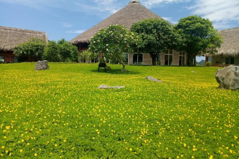 Cúc Phương Resort
