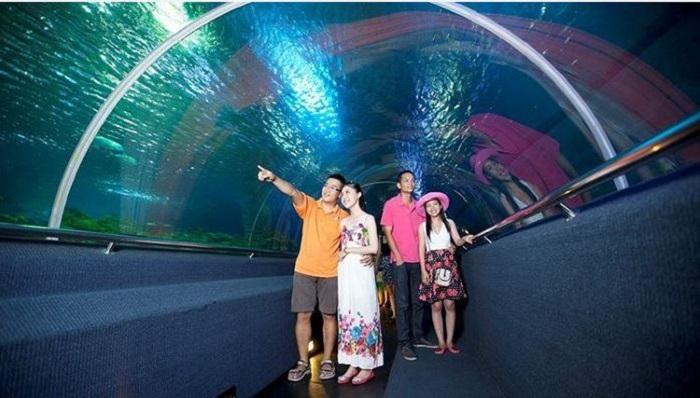 Khám phá thủy cung Vinpearl Land Nha Trang