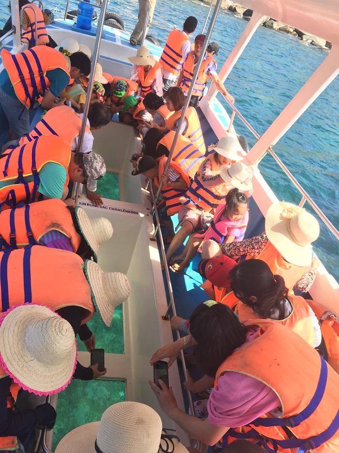 Ngắm san hô bằng tàu đáy kính