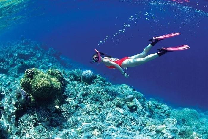 Tour câu cá và lặn ngắm san hô