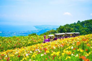 Tour Kyoto - Shiga - Nagoya 3N