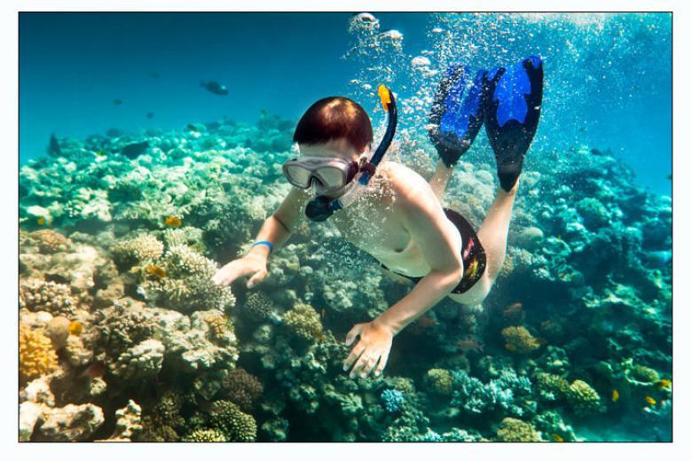 Tour Lặn Ngắm San Hô - Vườn Quốc Gia Côn Đảo 3N2Đ