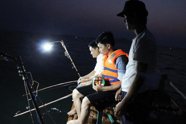 Tour Câu Mực Trên Biển Nhật Lệ