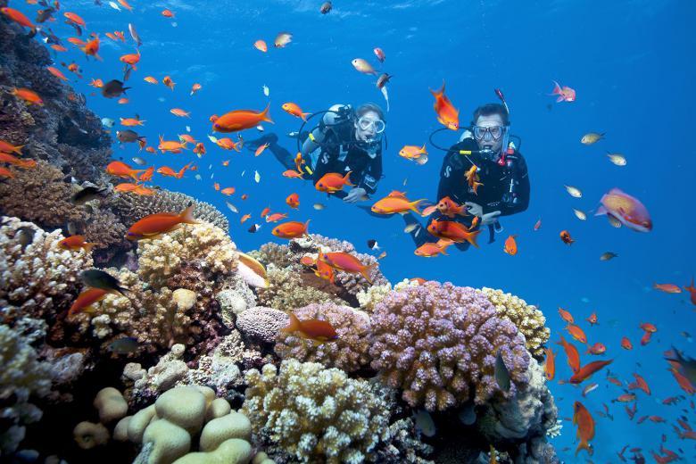 Khóa Học Lặn Biển Căn Bản Tại Nha Trang 3 Ngày