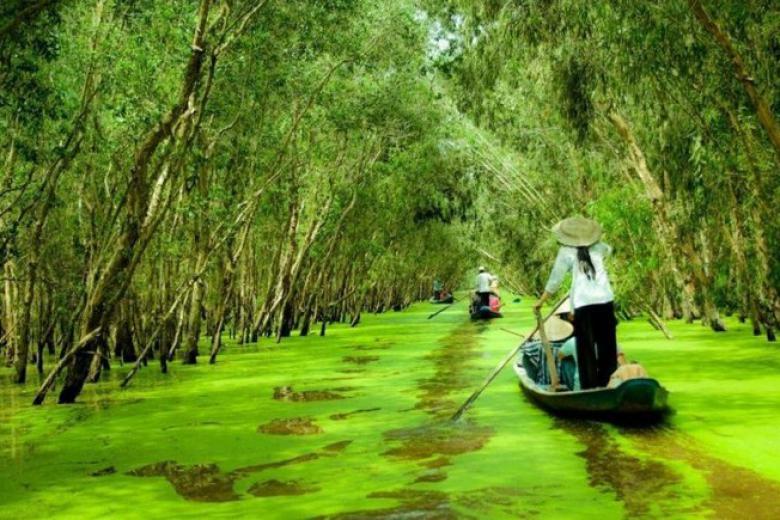 Tour Miền Tây Mùa Nước Nổi 4N3Đ (Cần Thơ - Cà Mau - An Giang)