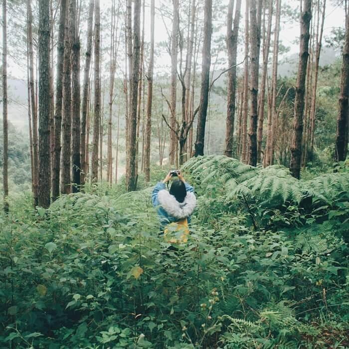 Biệt thự rừng thông Kon Tum ở đâu?