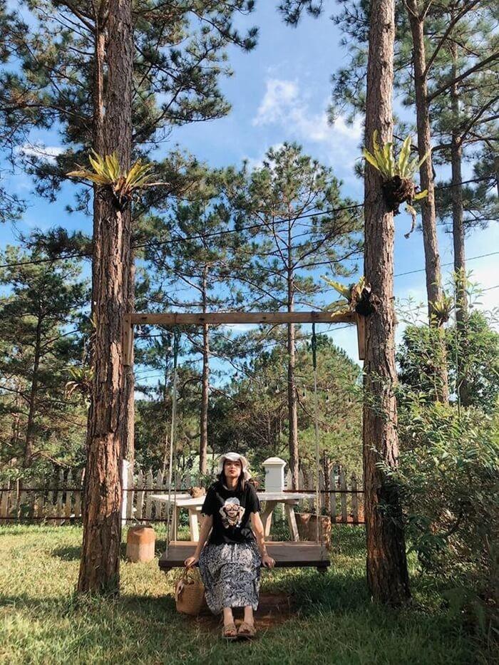 Biệt thự rừng thông Kon Tum - tạo dáng bên xích đu