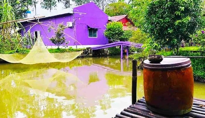 Căn nhà màu tím Cần Thơ như một ốc đảo mini
