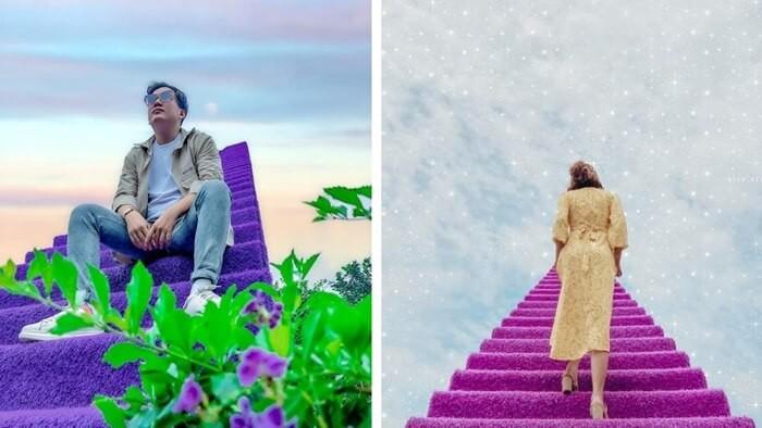 Căn nhà màu tím Cần Thơ - nấc thang thiên đường
