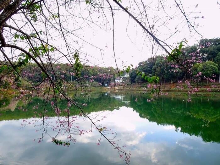 Đôi nét về hồ Đăk Ke