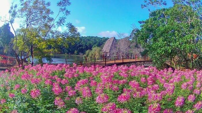 Truyền thuyết hấp dẫn hồ Đăk Ke Kon Tum