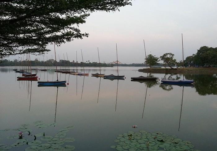 Hồ Inya Myanmar - tham gia chèo thuyền
