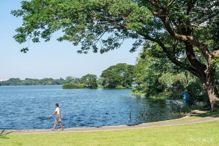 Hồ Inya Myanmar - đi bộ quanh hồ