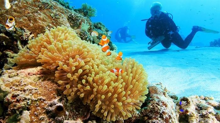 'Khuấy đảo tưng bừng' Hòn Tằm Nha Trang trong mùa du lịch hè