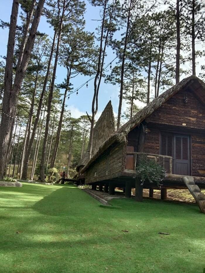 Khu du lịch Đà Lạt Tiên Cảnh - rừng thông cao xanh tận chân trời