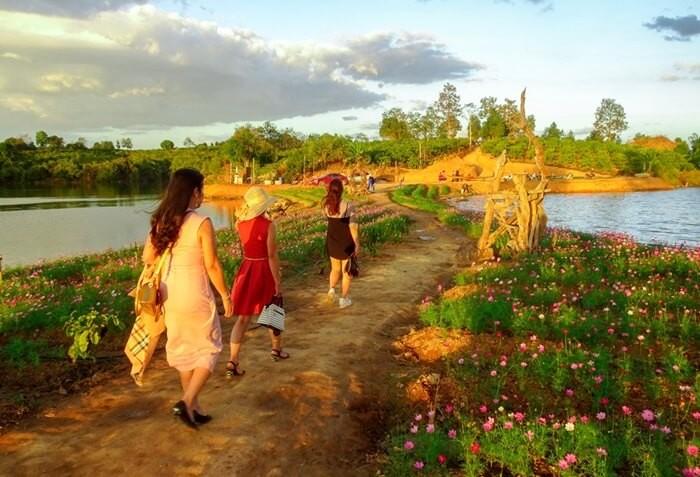 Giữa phố núi Kon Tum, xuất hiện vườn hoa Long Loi đẹp đến nao lòng