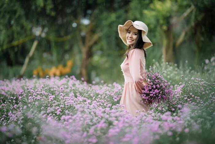 Vườn hoa thạch thảo Cần Thơ đẹp mộng mơ