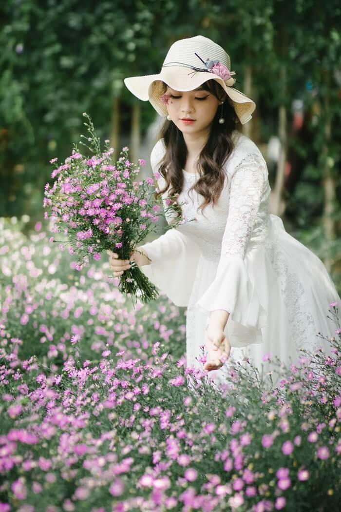 Vườn hoa thạch thảo Cần Thơ - đẹp lung linh