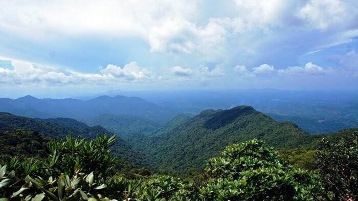 Vườn quốc gia Kon Ka Kinh - chinh phục đỉnh Kon Ka Kinh