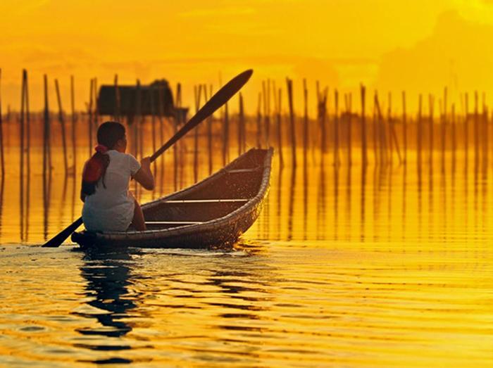 Phá Tam Giang mang trong mình nét đẹp hoang sơ, bình yên khiến ai cũng quyến luyến không muốn rời đi.