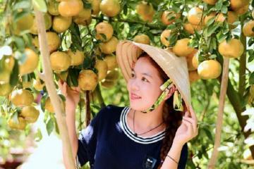 'Đi đu đưa' ngay đến vườn quýt Lai Vung nổi tiếng nhất miền Tây dịp Tết này!