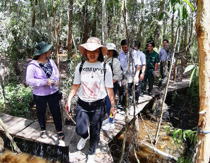 Khám phá rừng tràm Tân Tuyến An Giang - Cầu ván dài khoảng 5.000m
