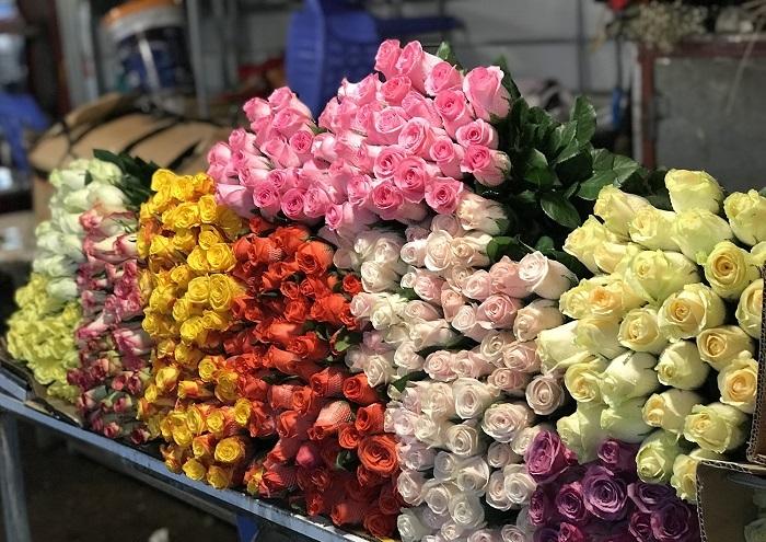 Chợ hoa Tết ở Sài Gòn - chợ hoa Hồ Thị Kỷ với đủ các loại hoa