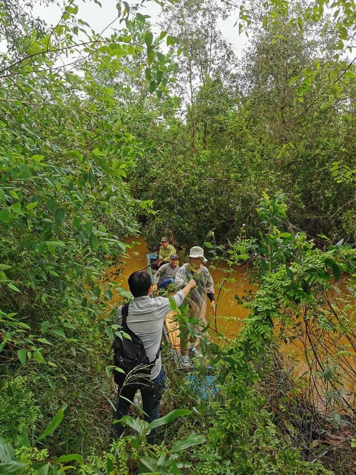 Khám phá rừng tràm Tân Tuyến An Giang - Đi xuồng máy ngắm cây cối