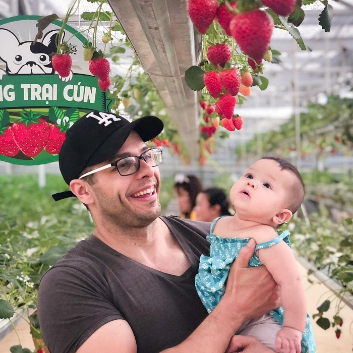 địa điểm du lịch Đà Lạt cho gia đình - tham quan vườn dâu tây