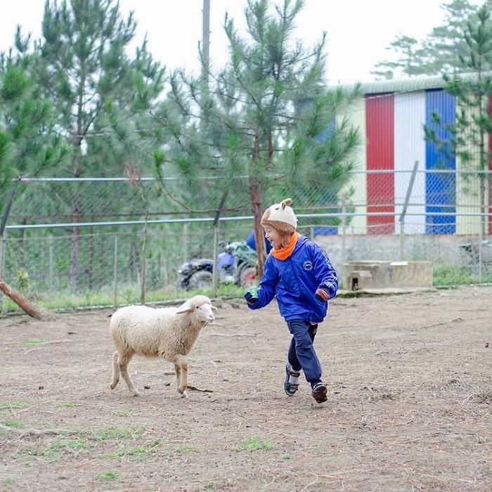 địa điểm du lịch Đà Lạt cho gia đình - sở thú Zoodoo