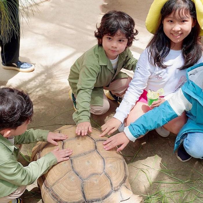 địa điểm du lịch Đà Lạt cho gia đình - vui chơi sở thú Zoodoo