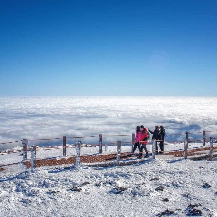 đường mòn đi bộ Hàn Quốc -  mây mù núi Hallasan