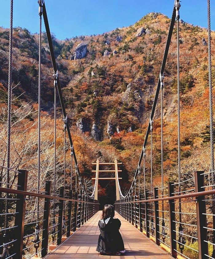 đường mòn đi bộ Hàn Quốc -  khám phá núi Hallasan