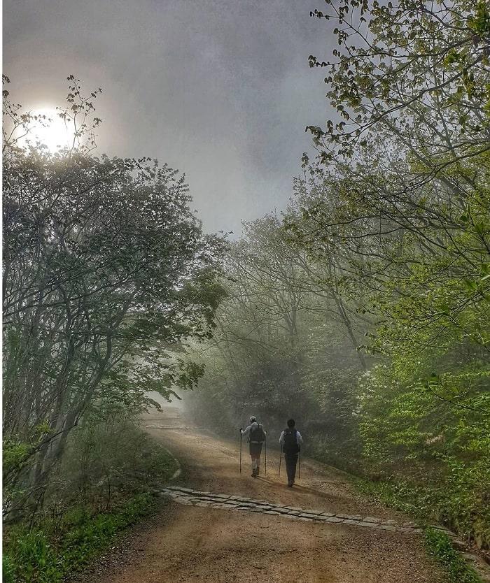 đường mòn đi bộ Hàn Quốc - chọn thời điểm thích hợp