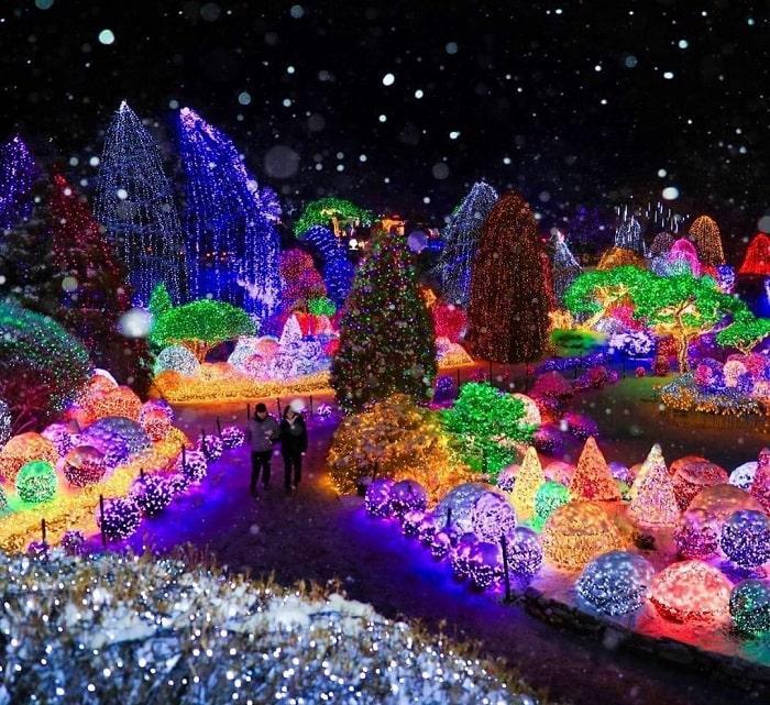 kinh nghiệm du lịch Hàn Quốc tháng 2 - tham dự lễ hội ánh sáng