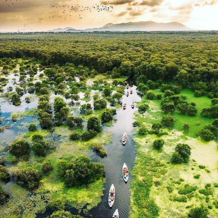 Khám phá rừng tràm Tân Tuyến An Giang - tiềm năng phát triển du lịch sinh thái
