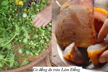 Cà đắng da trâu Lâm Đồng - món ngon từ sản vật Tây Nguyên