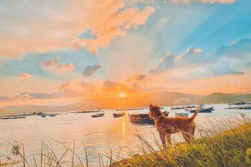 Top 10 địa điểm du lịch Sông Cầu Phú Yên đẹp đến nao lòng