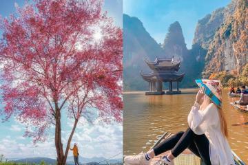 Tháng 2 du lịch ở đâu Việt Nam? 'Gom' ngay những điểm đến thú vị!