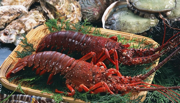 Con Dao fire lobster - how to choose to buy
