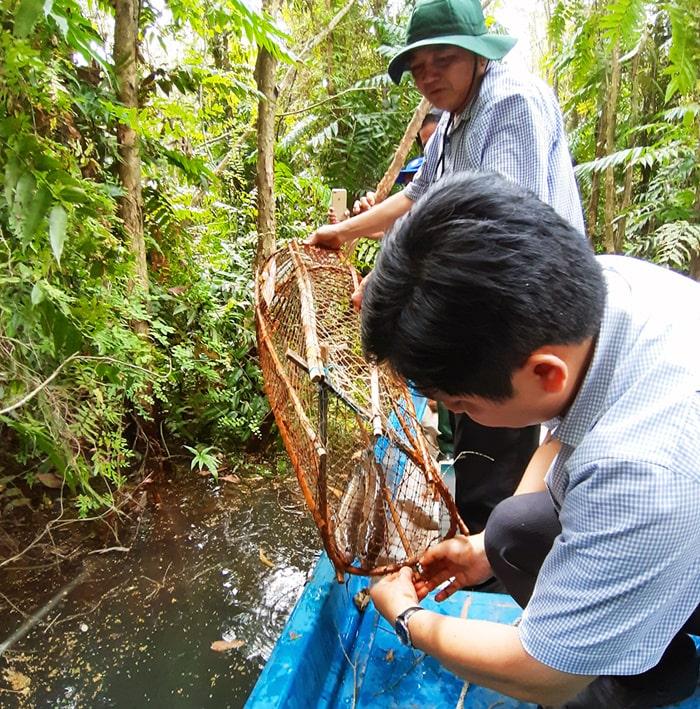 Khám phá rừng tràm Tân Tuyến An Giang - Trải nghiệm đổ lợp bắt cá đồng