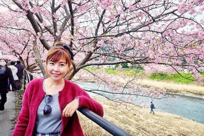 trải nghiệm mùa đông Nhật Bản - ngắm hoa anh đào Kawazu