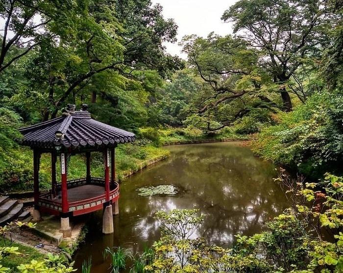 Cung điện Changdeokgung Seoul - địa điểm du lịch Hàn Quốc nổi tiếng nhất định nên ghé thăm