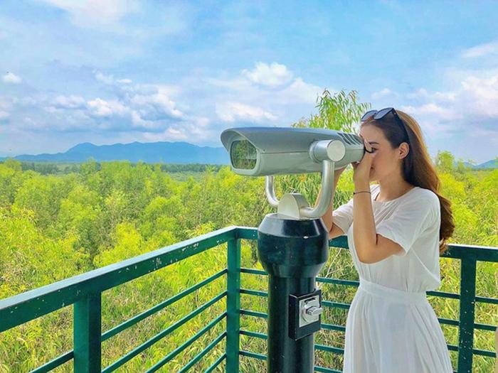 Tháp Vọng Cảnh là điểm mà bạn có thể ngắm toàn cảnh rừng Trà Sư từ trên cao.