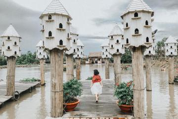 'Phát sốt' bến tàu tổ chim đẹp tựa trời Âu ở An Giang