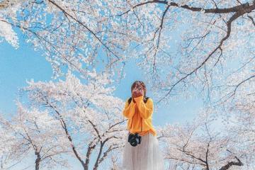 Các công viên quốc gia Hàn Quốc đẹp như mộng, không đi là tiếc!