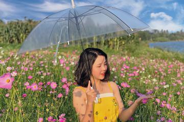 Điểm danh 7 vườn hoa đẹp ở Huế lên hình siêu lung linh