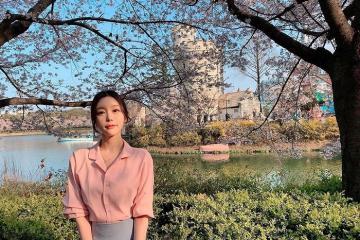 Tới hồ Seokchon Seoul ngắm hoa anh đào bừng nở
