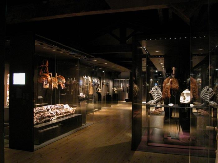 Bảo tàng tự nhiên của La Rochelle - Những hoạt động tham quan ở La Rochelle